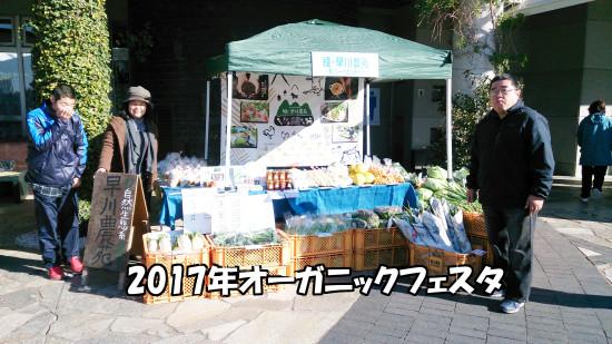 オーガニックフェスタ2017_文字入り_01